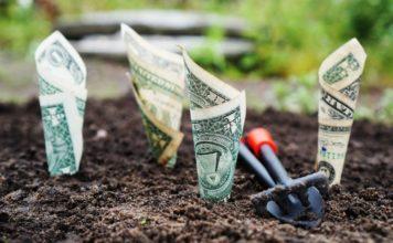 5 kryptomien, ktoré vám dokážu generovať pasívny príjem
