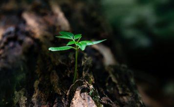 12 univerzálnych zákonov, ktorých pochopenie pozitívne ovplyvní váš život