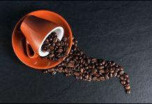 Kávový priemysel je v kríze. Jej pestovanie prestáva byť ziskové